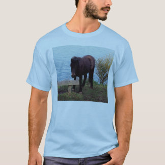 South Devon Coast Dartmoor Pony At Bench T-Shirt
