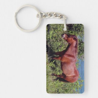 South Devon Coast Dartmoor Pony In Bracken Key Ring