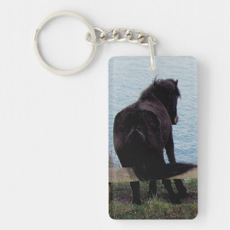 South Devon Coast Dartmoor Pony Itching On Bench Key Ring