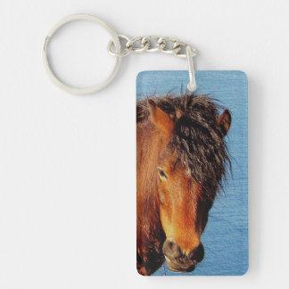 South Devon Coast Dartmoor Pony Looking . 2 Key Ring