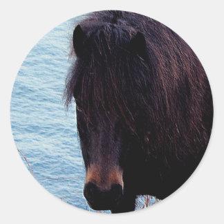 South Devon Coast Dartmoor Pony Looking .2. Round Sticker