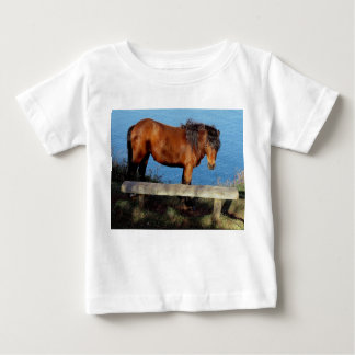 South Devon Coast Dartmoor Pony Near Bench .1 Baby T-Shirt
