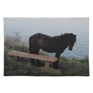 South Devon Coast Dartmoor Pony Near Bench .3. Placemat
