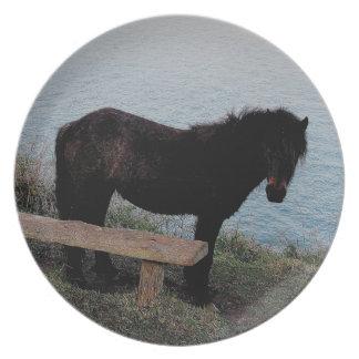 South Devon Coast Dartmoor Pony Near Bench .3. Plate