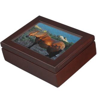 South Devon Coast Dartmoor Pony On Summer Evening Keepsake Box