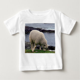 South Devon Coast Lamb Grazing On Cliff Edge Baby T-Shirt