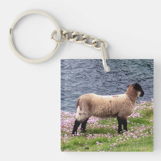 South Devon Coast Lamb Standing In Pinks Key Ring