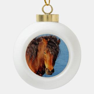 South Devon Coast Path Dartmoor Pony Looking . 2 Ceramic Ball Christmas Ornament