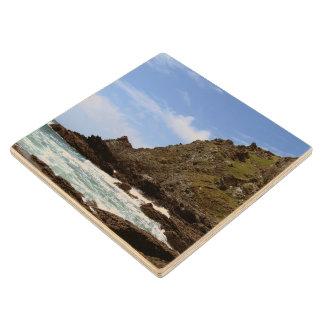 South Devon Coast Prawle Point Wood Coaster