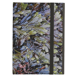 South Devon Coast Rock Pool Plant Life Cover For iPad Air