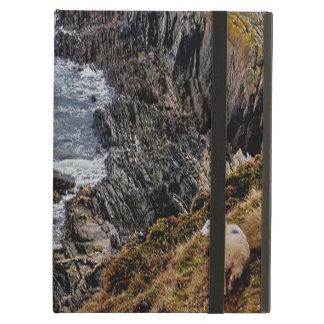 South Devon Coast Sheep On Remote Cliff Path iPad Air Cover