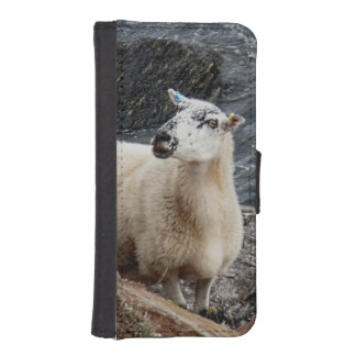 South Devon Coast Sheep On Rocks Looking iPhone SE/5/5s Wallet Case