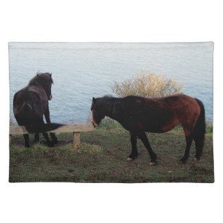 South Devon coast two Dartmoor Ponies at bench Placemat