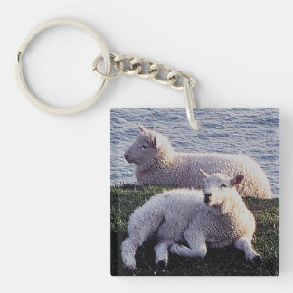 South Devon Coast Two Lambs Resting Key Ring