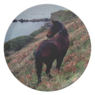 South Devon Coastline Dartmoor Pony Looking Plate