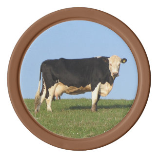 South Devon Cow On Hill Top Looking Poker Chips