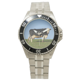 South Devon Cow On Hill Top Looking Wrist Watches