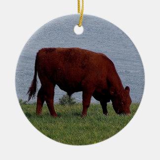 South Devon cow on remote coastline Round Ceramic Decoration