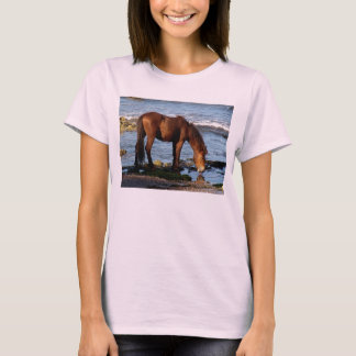 South Devon Dartmoor P0ny Licking Sea Water T-Shirt