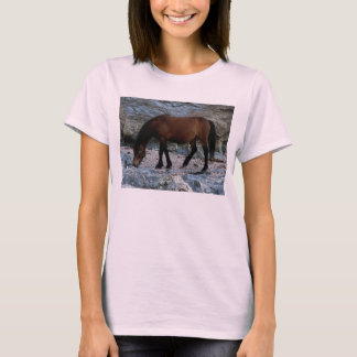 South Devon Dartmoor Pony In Rocks On Remote Beach T-Shirt