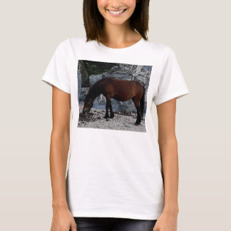 South Devon Dartmoor Pony Licking Beach T-Shirt