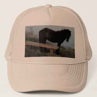 South Devon Dartmoor Pony Near Bench.3. Trucker Hat
