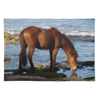 South Devon Dartmoor Pony On On Beach Licking Sea Placemat