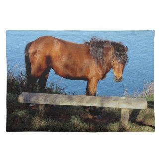 South Devon Dartmoor Pony On Remote Coast Path Placemat