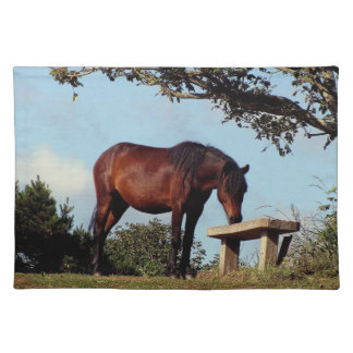 South Devon Dartmoor Pony Sniffing Bench Placemat