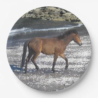 South Devon Dartmoor Pony Trotting On Beach Paper Plate