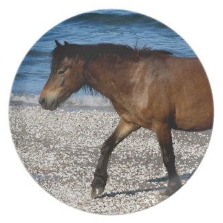 South Devon Dartmor Pony Walking On Beach Plate