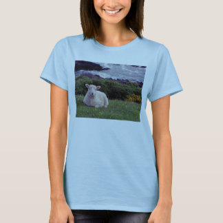 South Devon Lamb Resting On Remote Wild Coastline T-Shirt