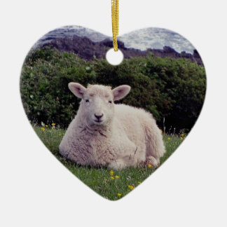 South Devon Lamb Resting On Wild Remote Coastline Christmas Ornament