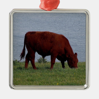 South Devon on wild south Devon coastline Christmas Ornament