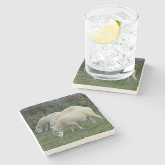 South Devon Pasture Three Sheep Grazing In Line Stone Coaster