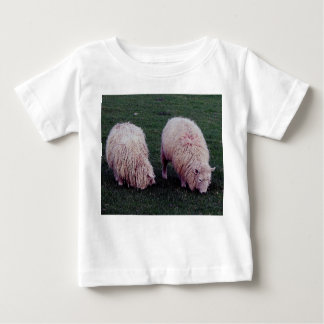 South Devon Pasture Two Long Wool Sheep Grazing Baby T-Shirt