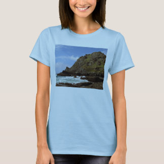 South Devon Prawle Point  (1) T-Shirt