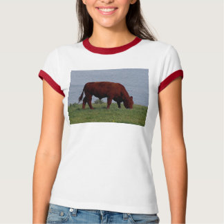 South Devon red cow on remote coastline T-Shirt