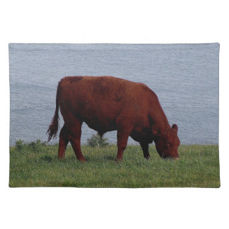 South Devon Ruby Red Cow Grazeing On Coastline. Placemat