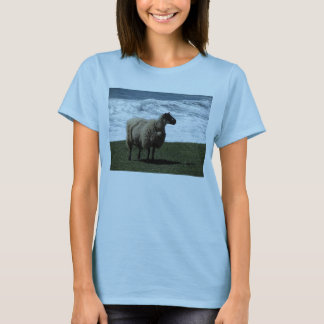 South Devon Sheep On Wild Remote Coastline T-Shirt