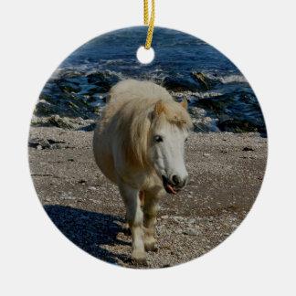 South Devon Shetland Pony Walking On Remote Beach Round Ceramic Decoration