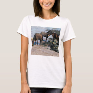 South Devon Three Dartmoor Ponies Playing On Beach T-Shirt