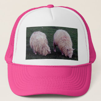 South Devon Two Longwool Sheep Grazeing Trucker Hat