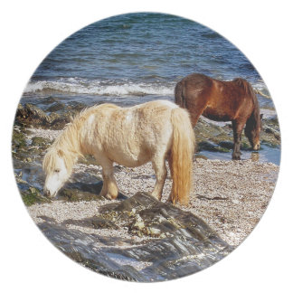 South Devon Two Ponies In Rocks On Remote Beach Plate