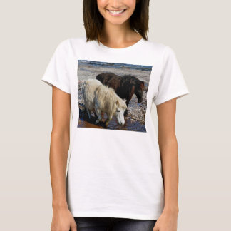 South Devon Two Shetland Ponies On Beach T-Shirt