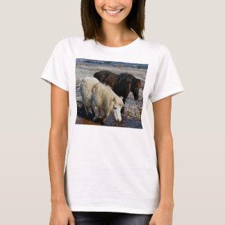 South Devon Two Shetland Ponies On Beach T-Shirt
