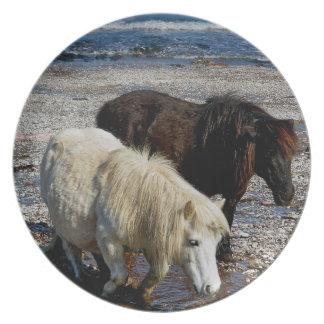 South Devon Two Shetland Ponies On Remote Beach Plate