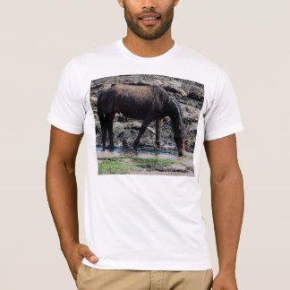 South Devon Wet Looking Dartmoor Pony On Beach T-Shirt
