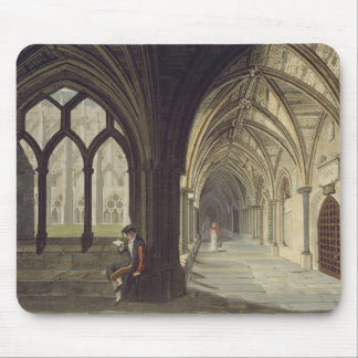 South East Angle of the Cloisters, plate T from 'W Mouse Mat
