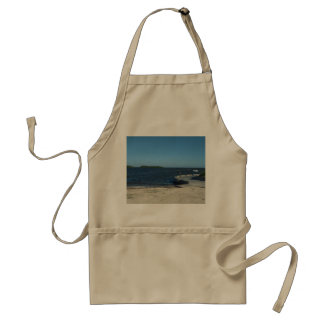 SOUTH FLORIDA WATERS 2017 STANDARD APRON